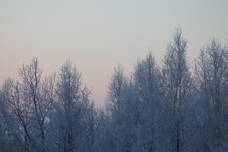 -27℃の朝。